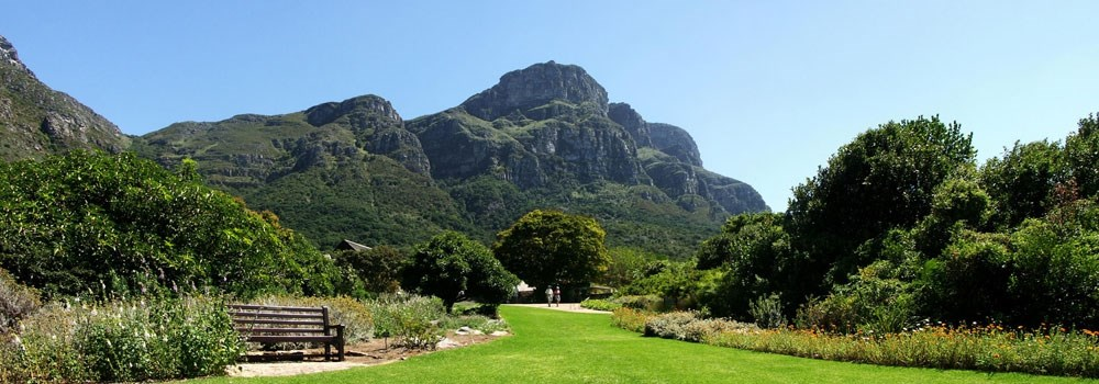 Day 11 - Kirstenbosch