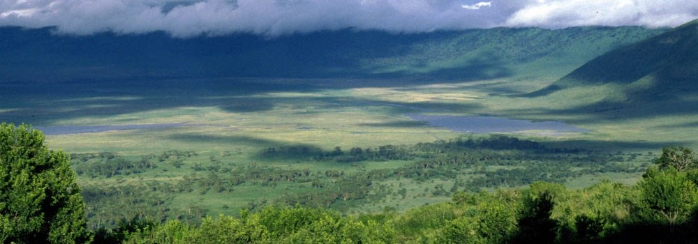 Day 8 - Ngorongoro crater