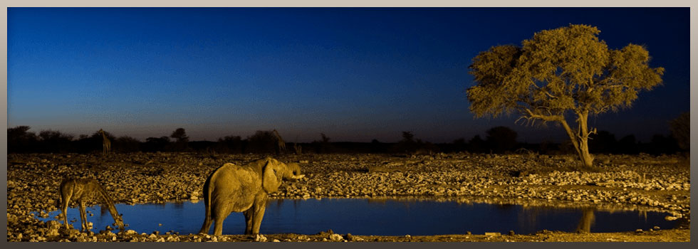 Getaway Tours and Safaris Banner Image